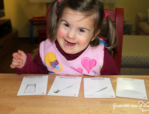 Le carte tematiche / flashcards