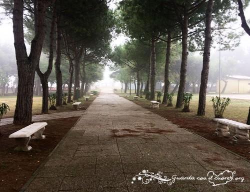 URGENTE: Cercasi Gruppo Scout per Settimana Estiva Cavallino Treporti (Ve)